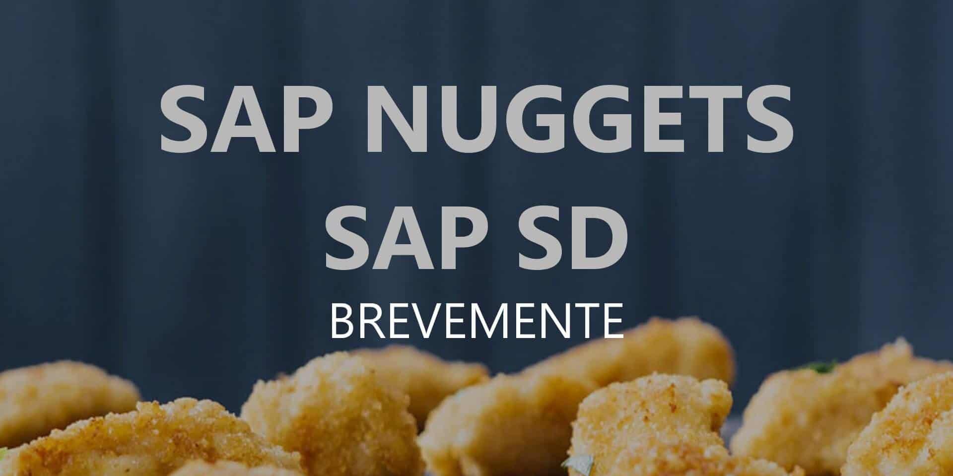 SAP Nuggets